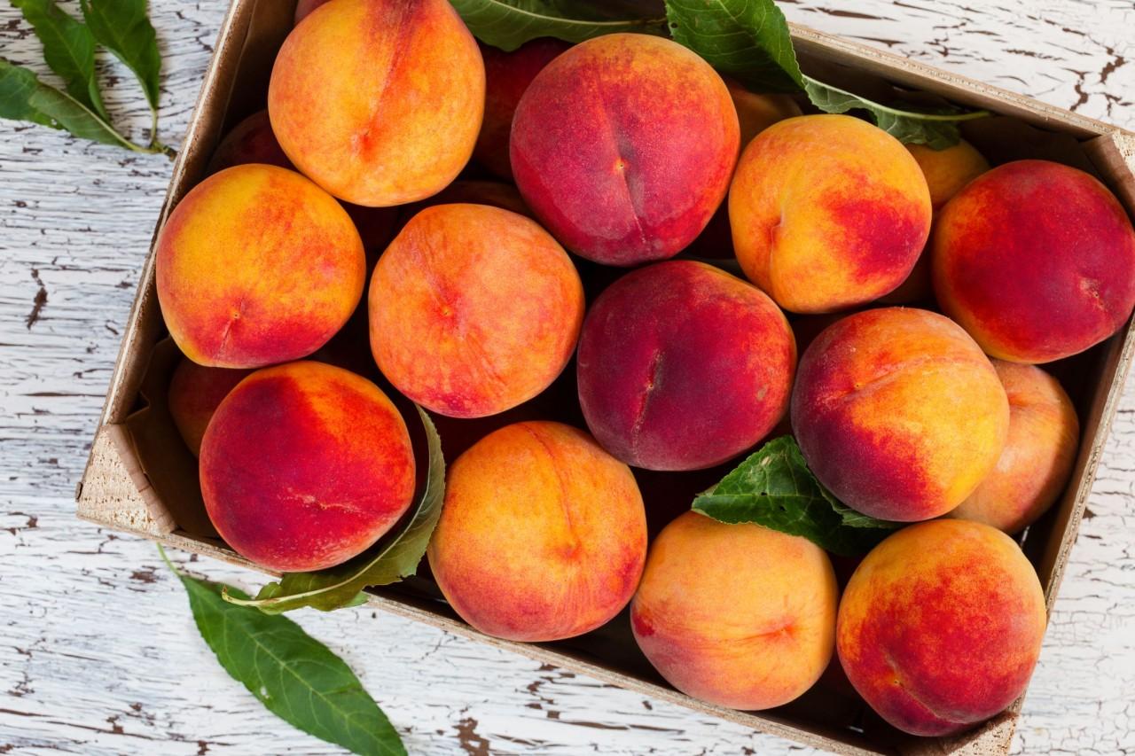 Ketojenik Diyette Hangi Meyveler Yenmelidir? Ketojenik Dostu 9 Meyve